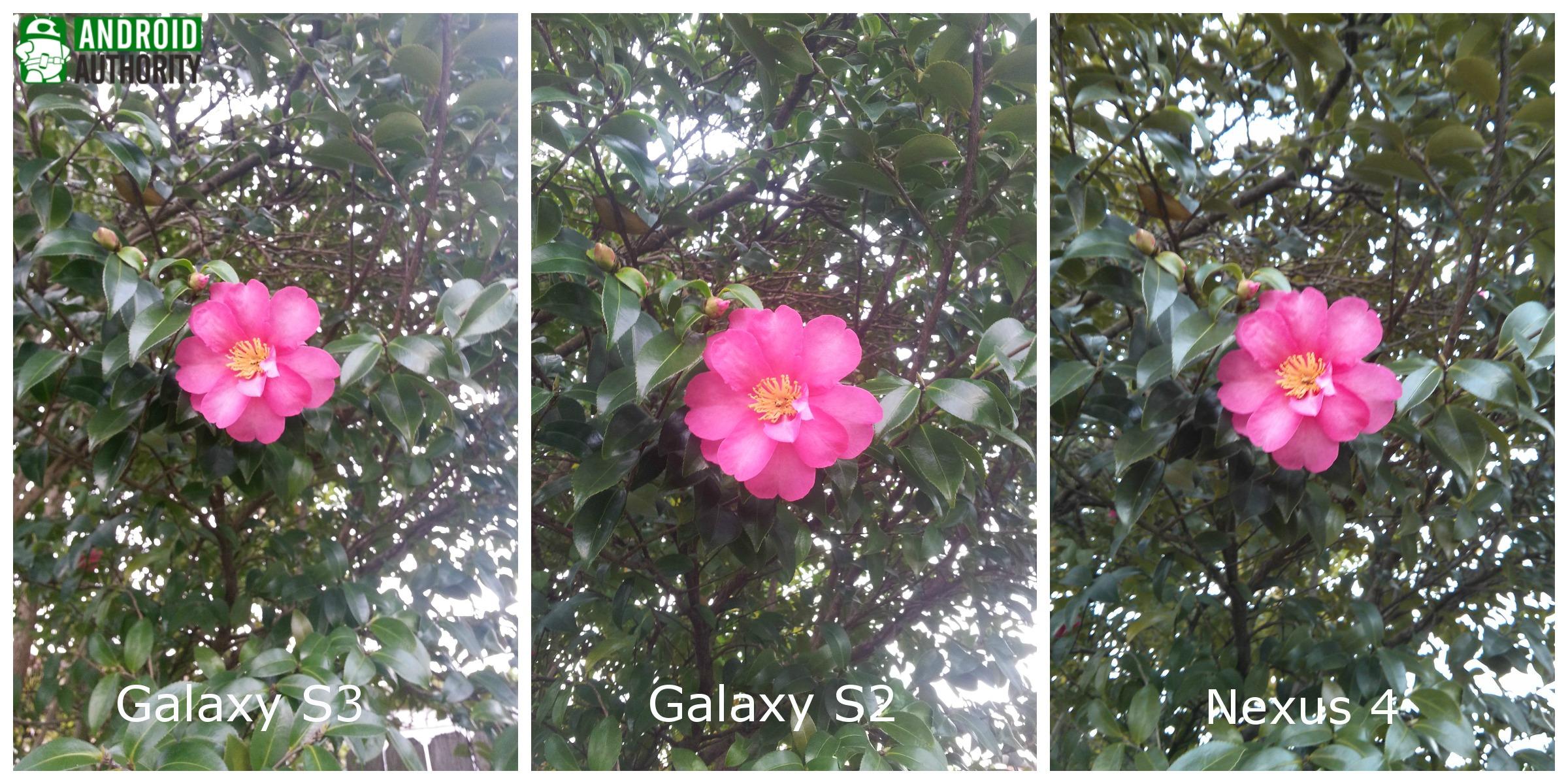 galaxy-s3-galaxy-s2-nexus 4-flower-aa