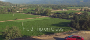 Field Trip on Glass