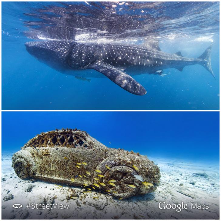Google adds new underwater Street View scenes to Maps