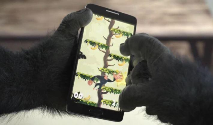 Gorilla Glass 4 hands