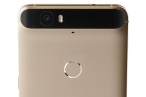 gold-nexus-6p-main