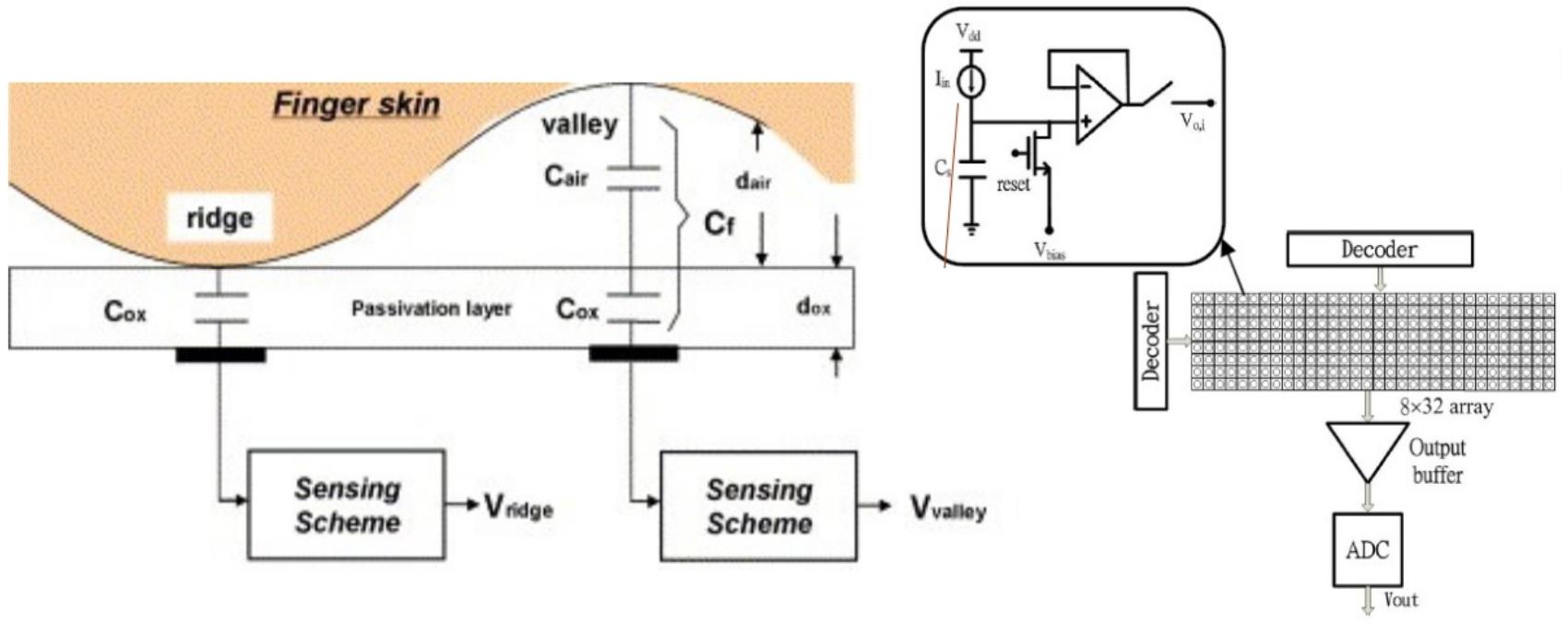 Capacitive Fingerprint Scanner design