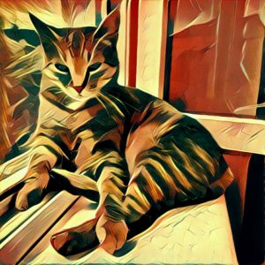 Prisma for Android Dreams