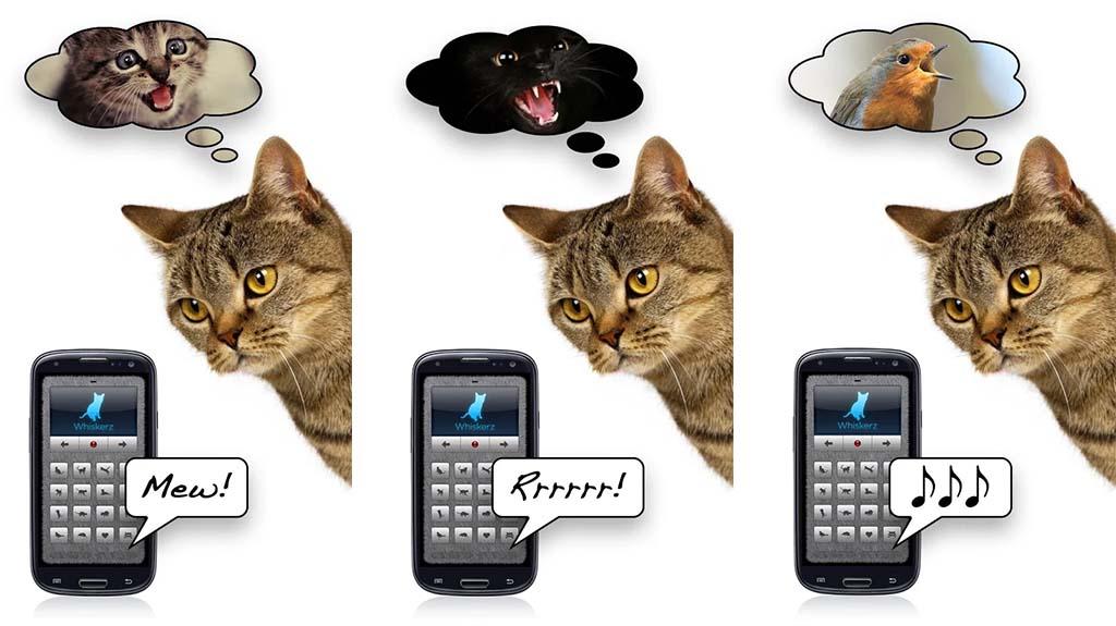 human to animal translators most useless apps