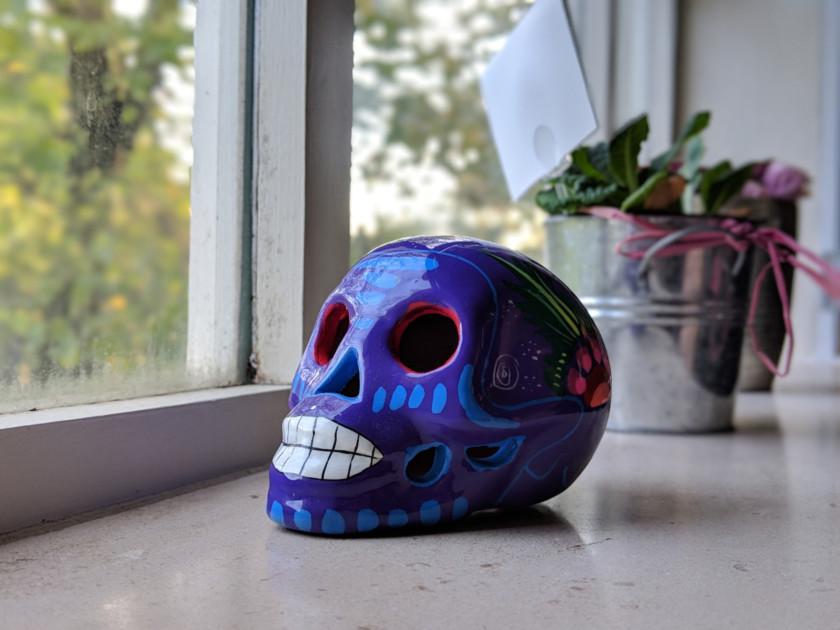 Portrait mode of Google Pixel 3 bokeh skull