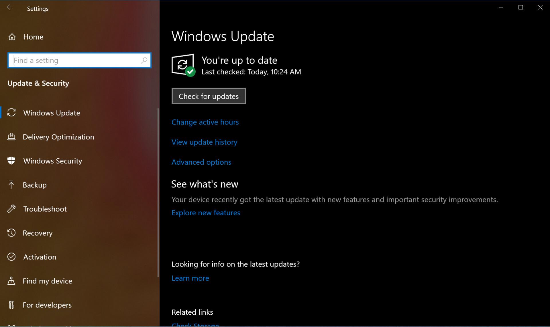 Svreenshot of Windows 10 update menu