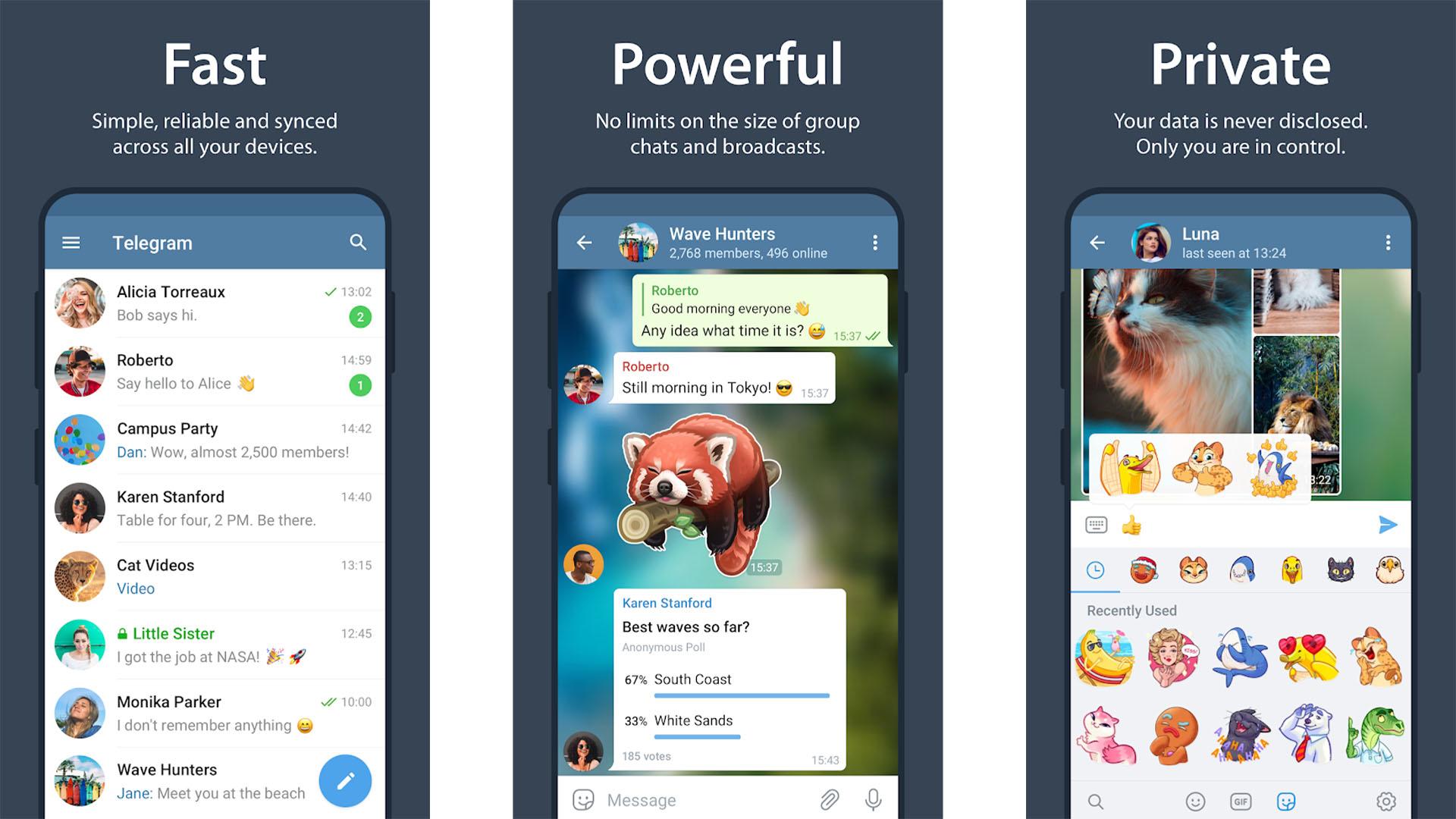 Telegram screenshot 2020