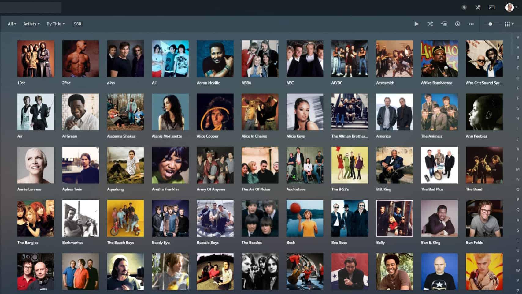 A screenshot of what the Plex music interface looks like on desktop.