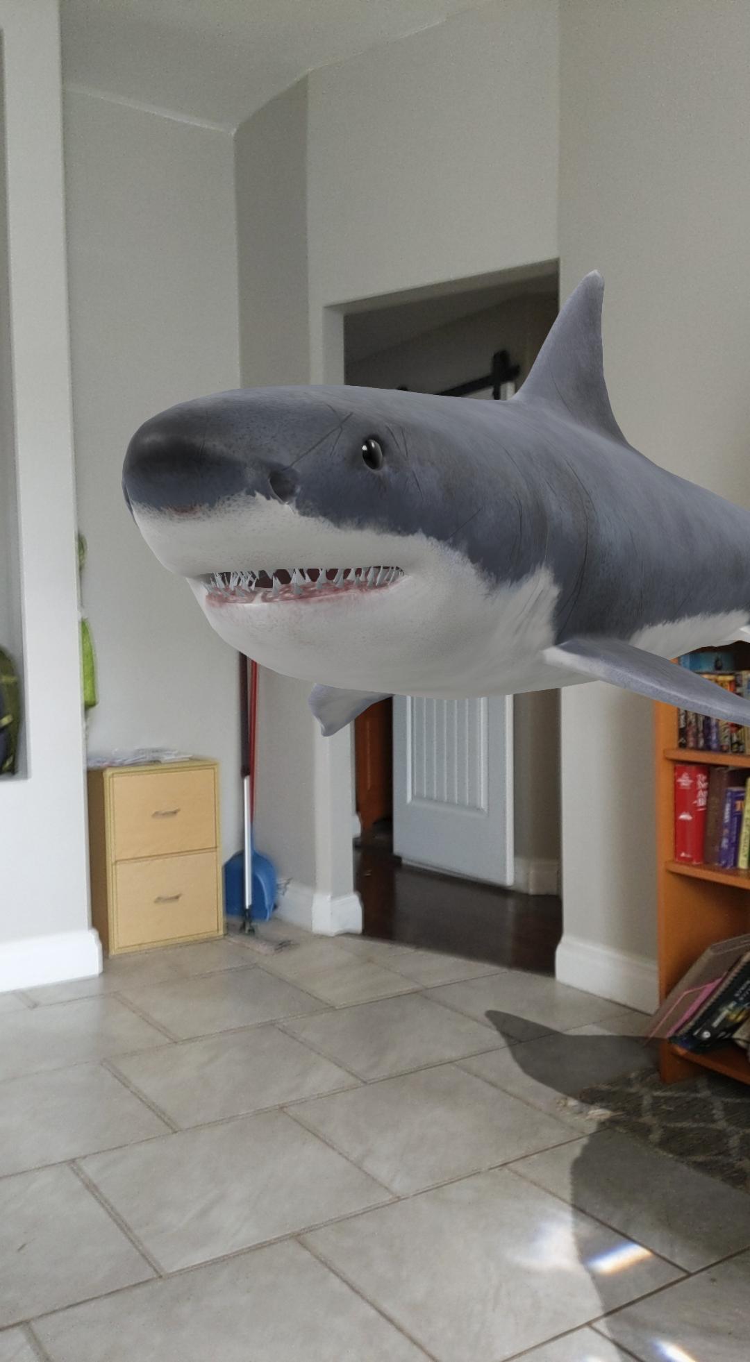 An AR shark in a house.