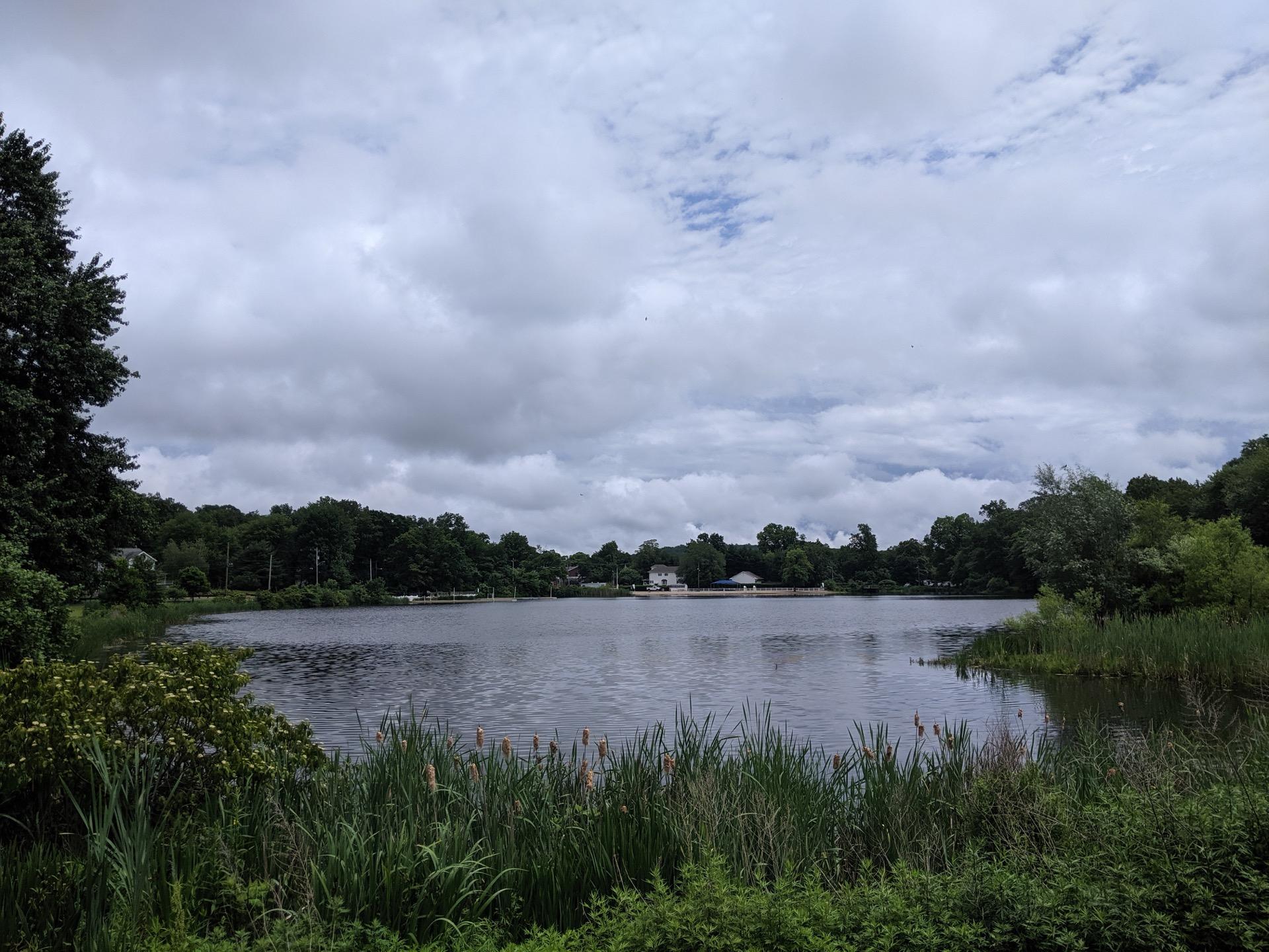 Google Pixel 3a XL Camera Review Landscape Pond