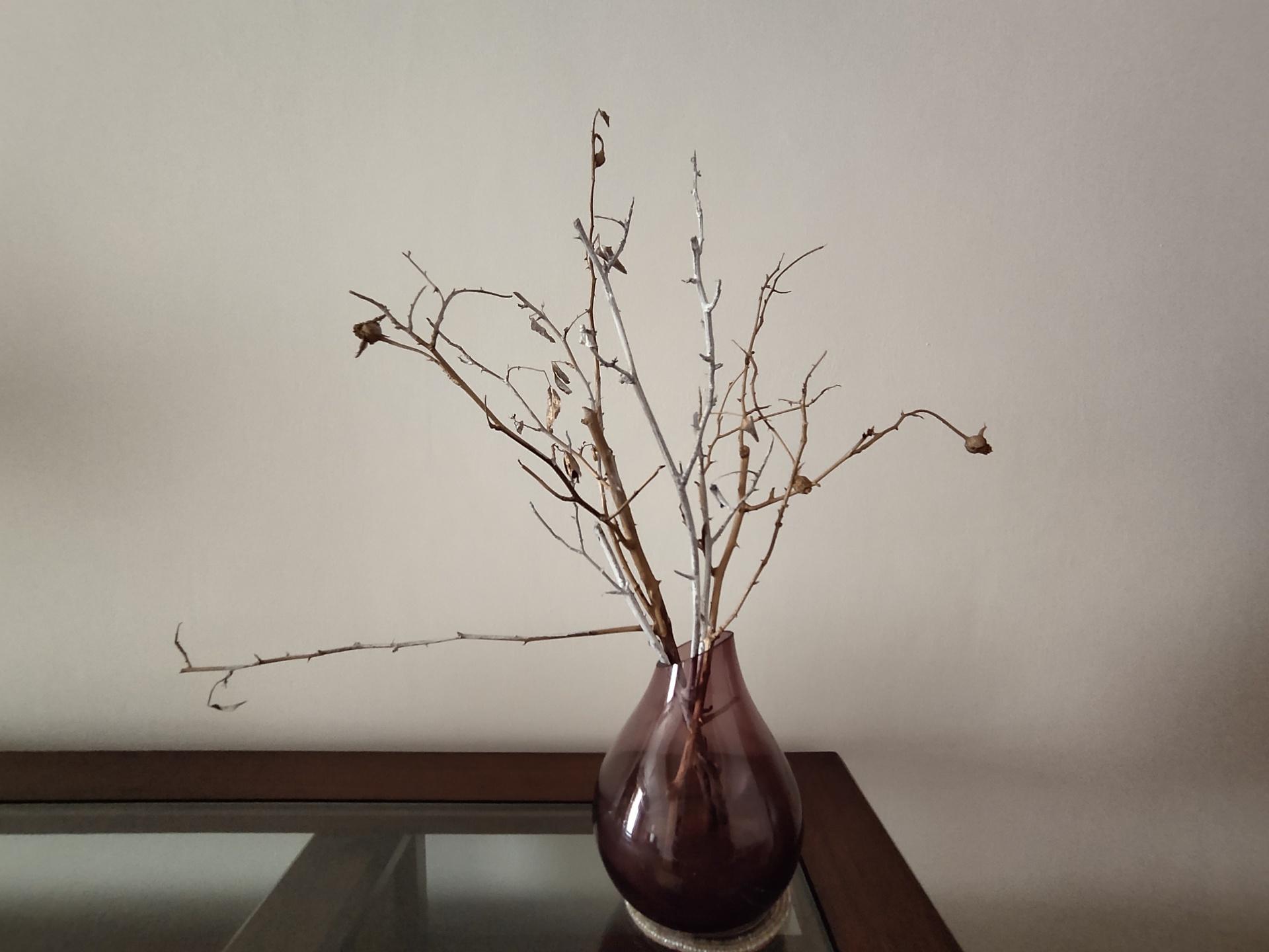 Vivo Z1x indoor flower vase camera sample