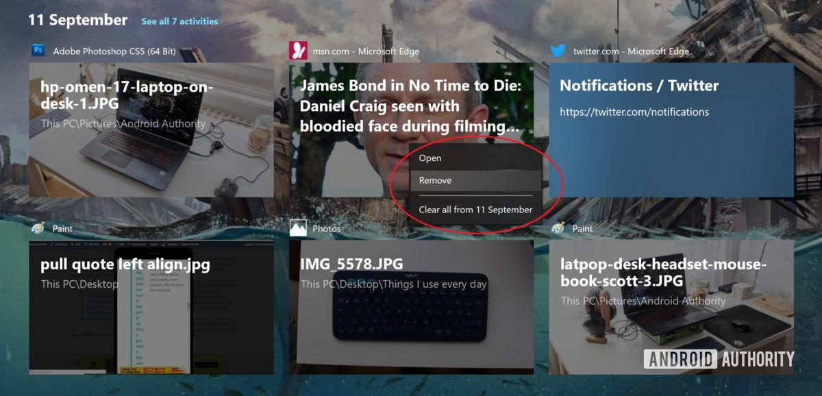 windows timeline history screenshot