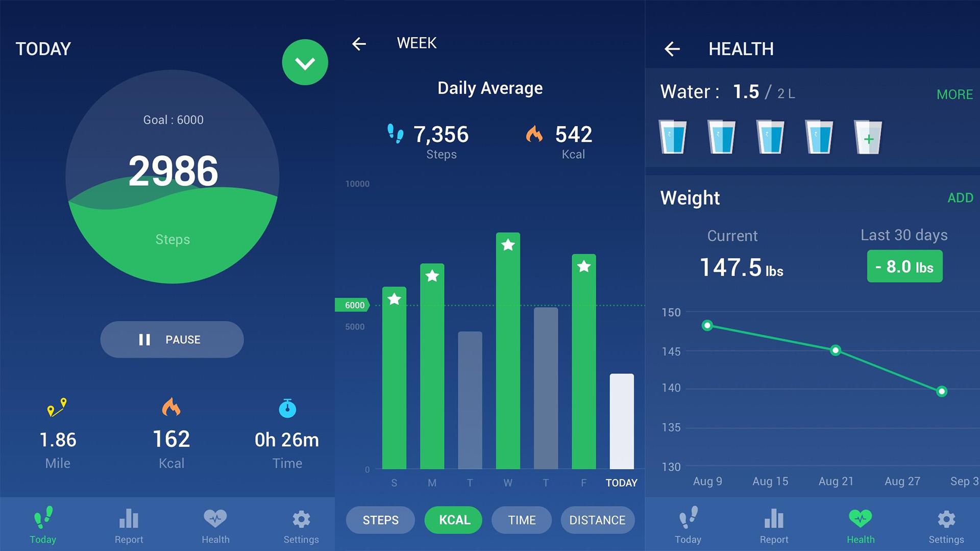 Leap Fitness Step Counter screenshot 2020