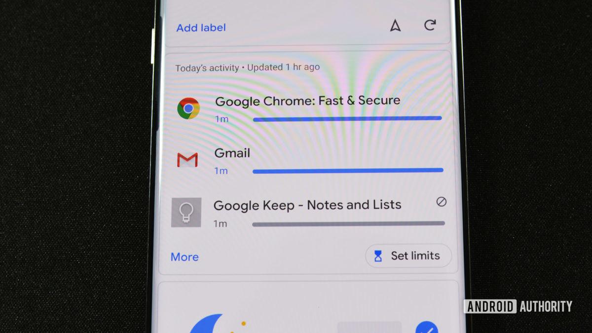 Google Family Link Activity 1