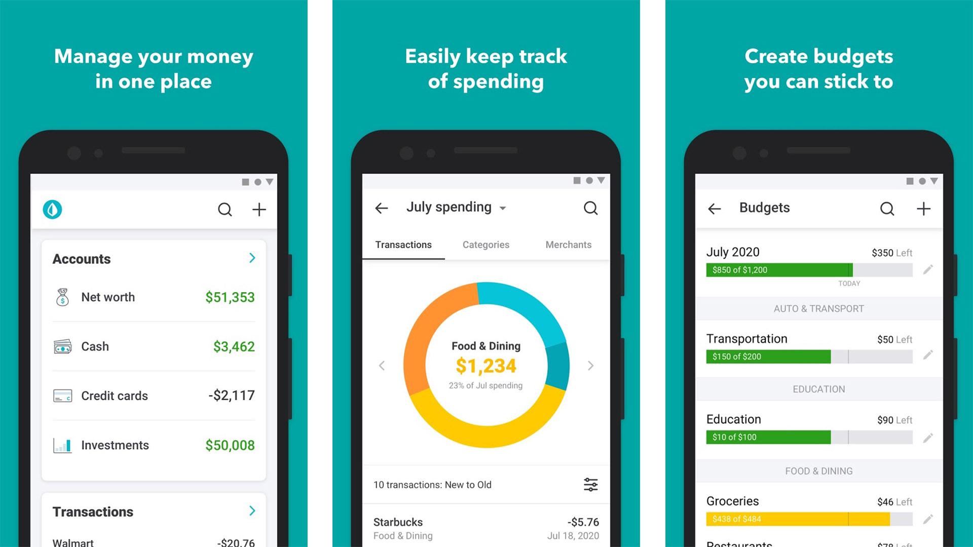 Mint screenshot 2020