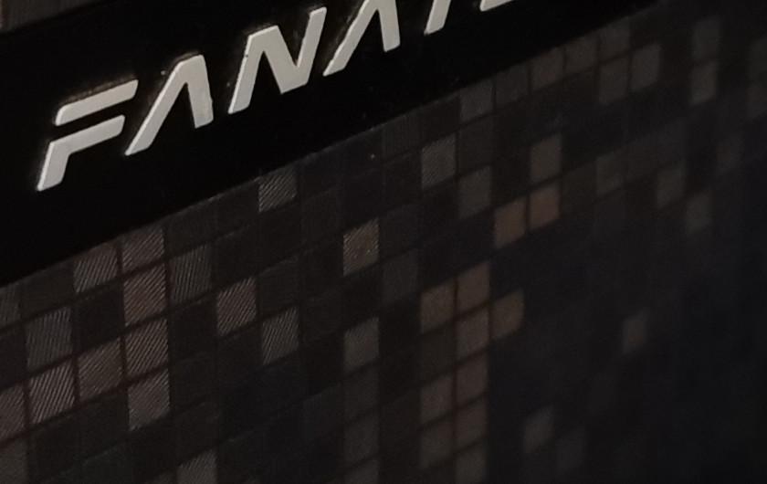 Huawei P30 Pro 100% crop