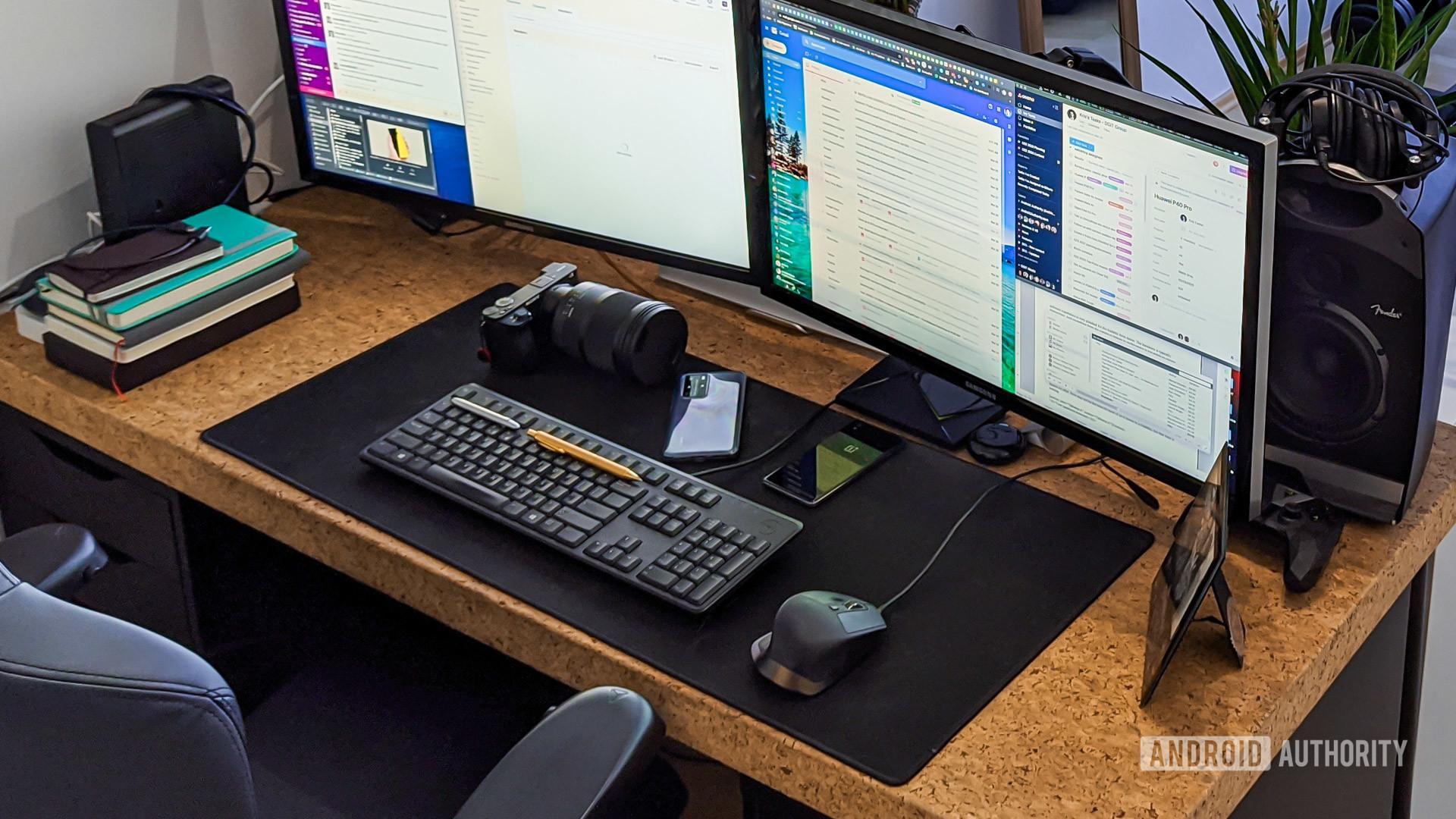 FlexiSpot E5 standing desk review full setup