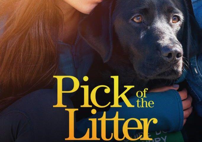 pick of the litter disney plus