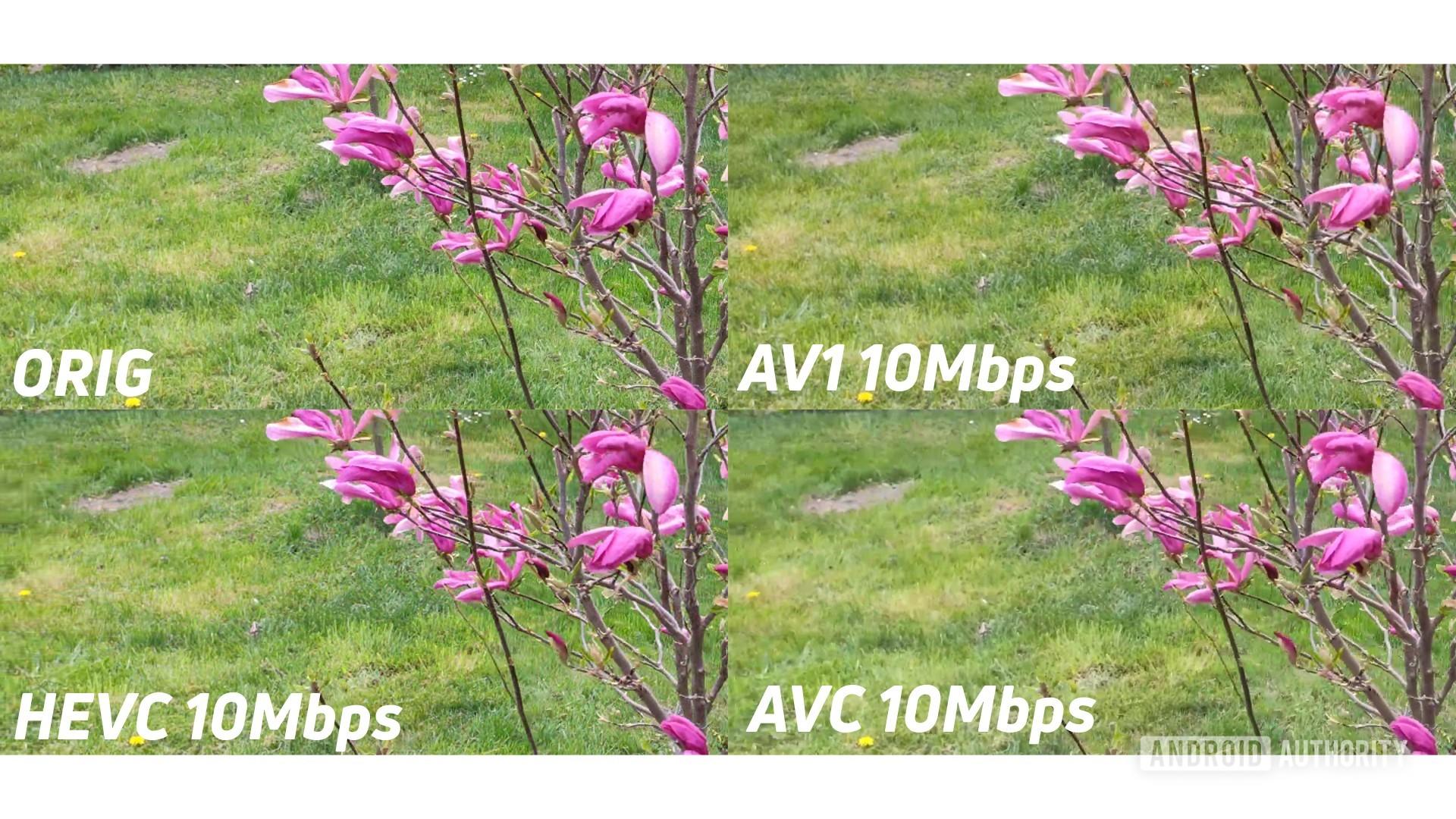 Example of 4k original against AV1 HEVC AVC 10mbps zoomed