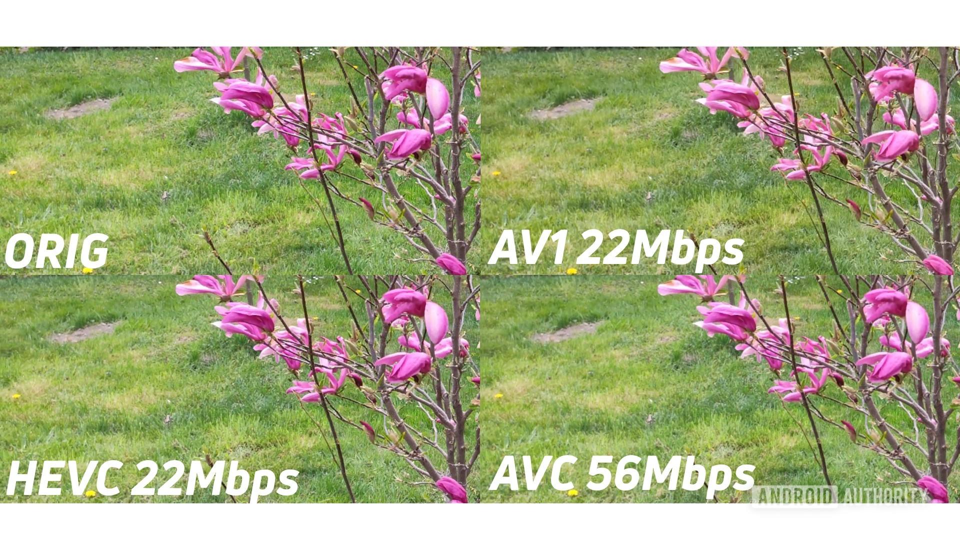 Example of 4k original against AV1 HEVC AVC zoomed