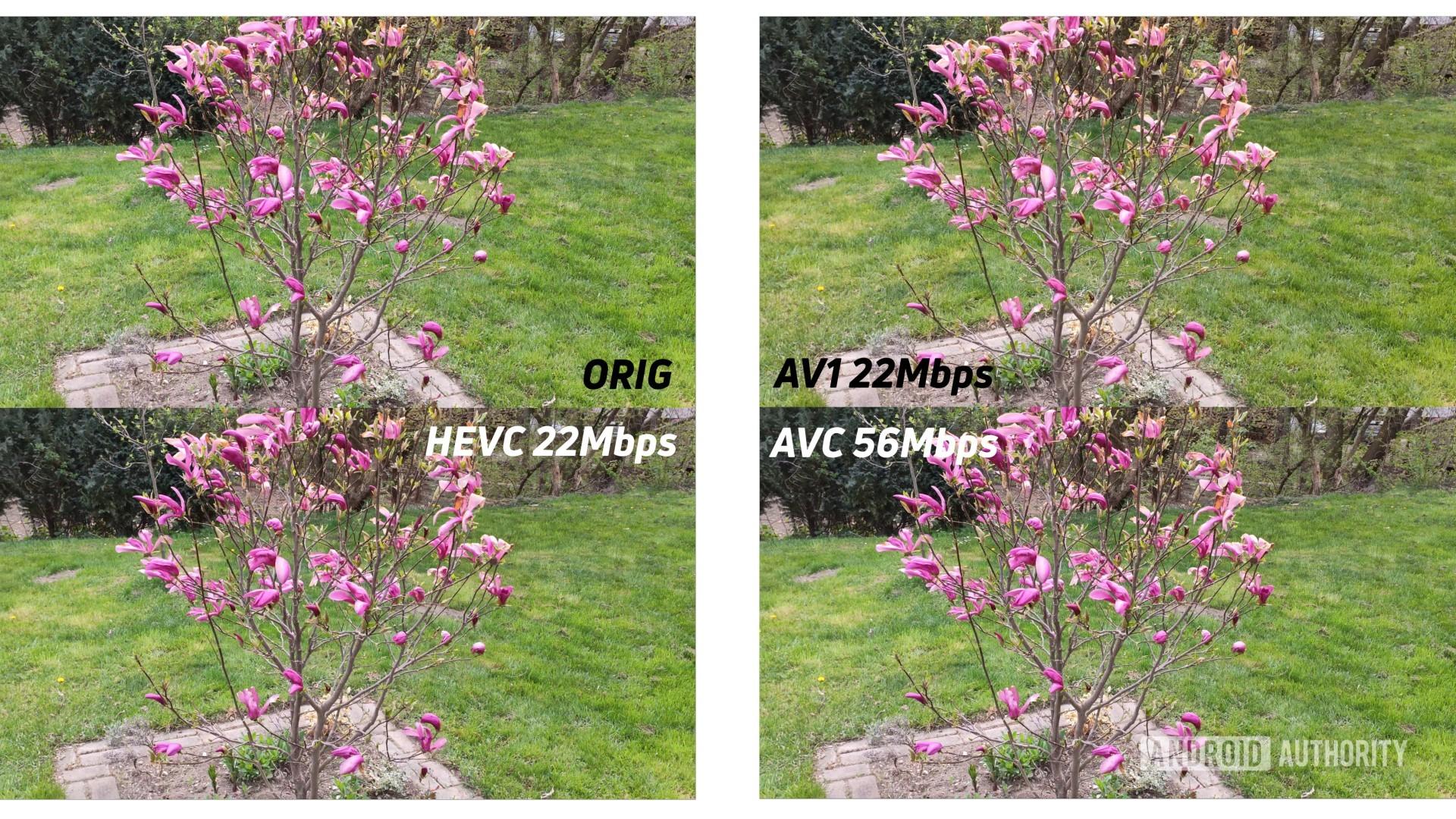 Example of 4k original against AV1 HEVC AVC