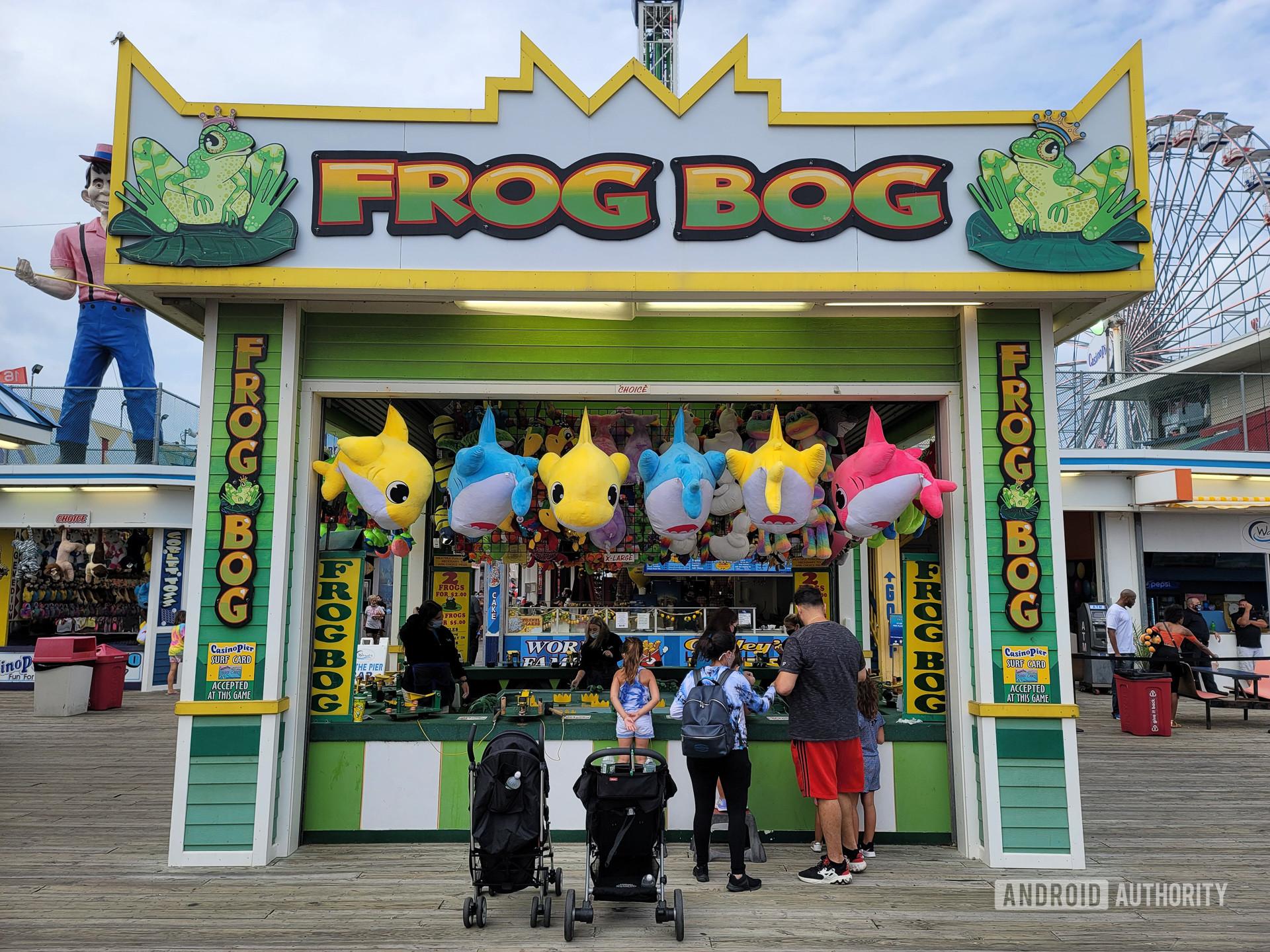 Samsung Galaxy Note 20 Ultra Photo Sample Frog BOg