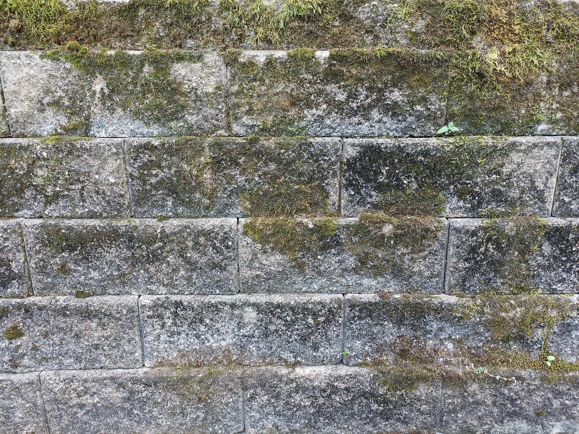 blu g90 pro review camera samples brick