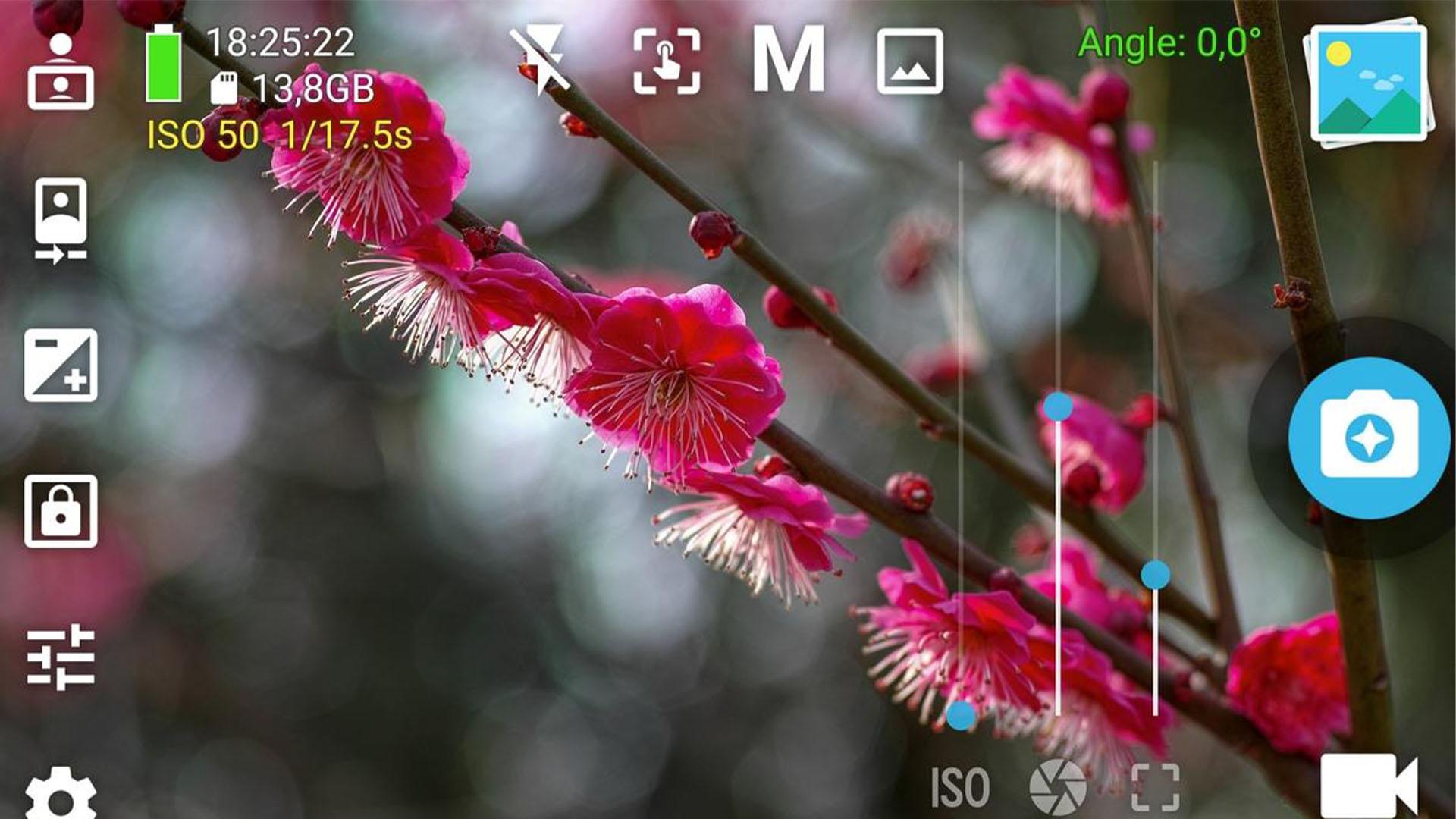 HedgeCam 2 screenshot