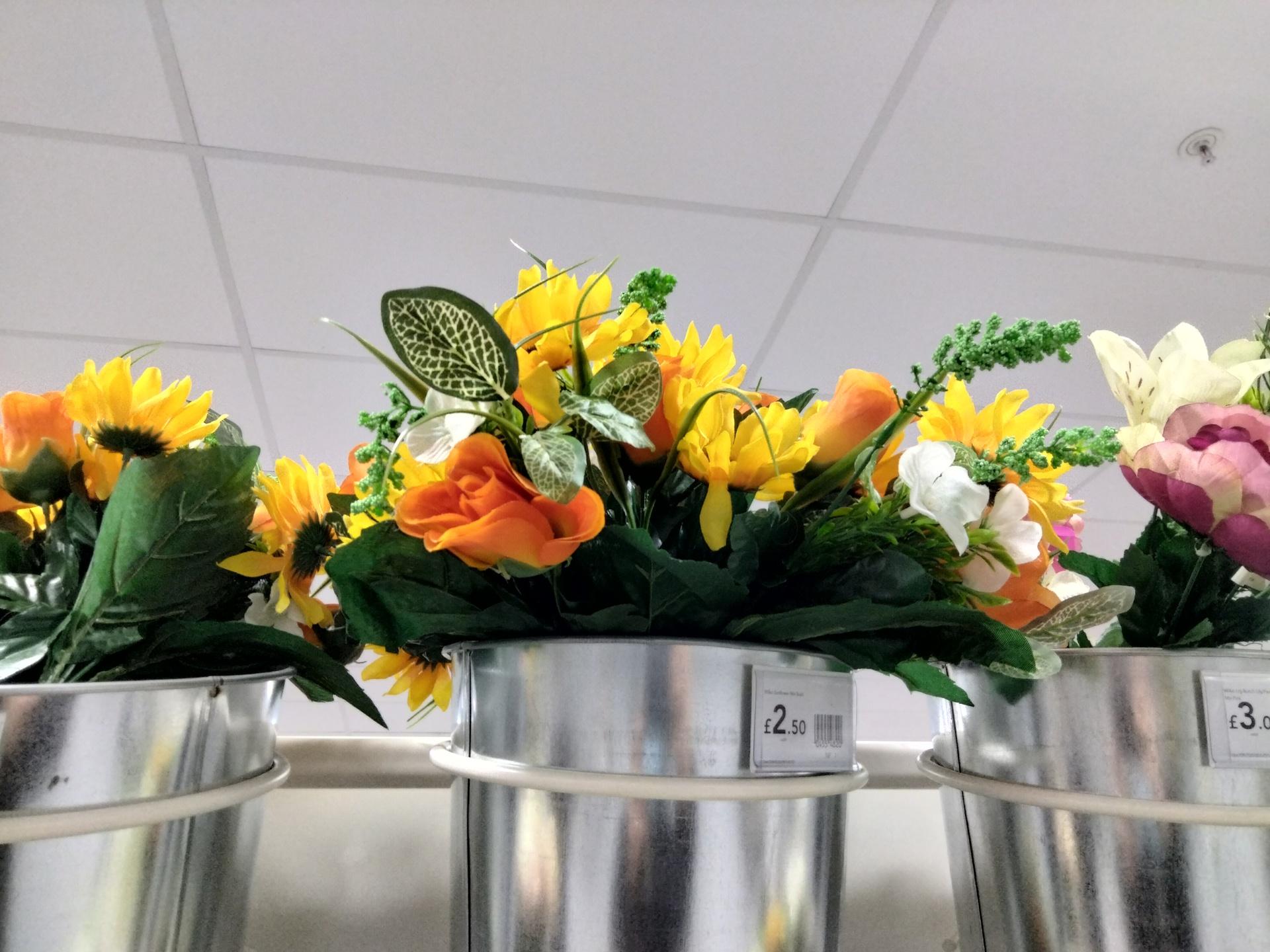 OnePlus Nord N100 photo sample of flowers