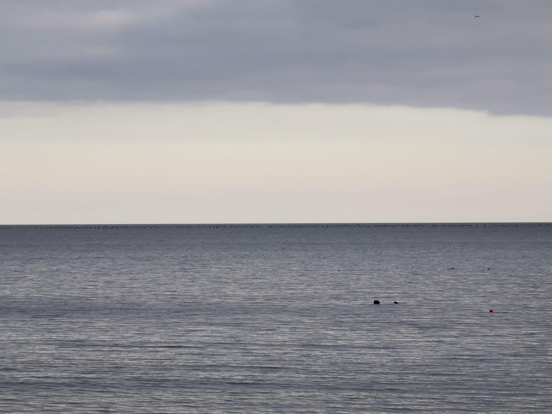 Huawei P30 Pro 5x photo sample of the sea