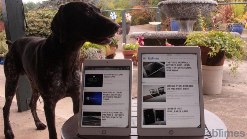 iPad Mini 4 vs iPad Air 2 display dog