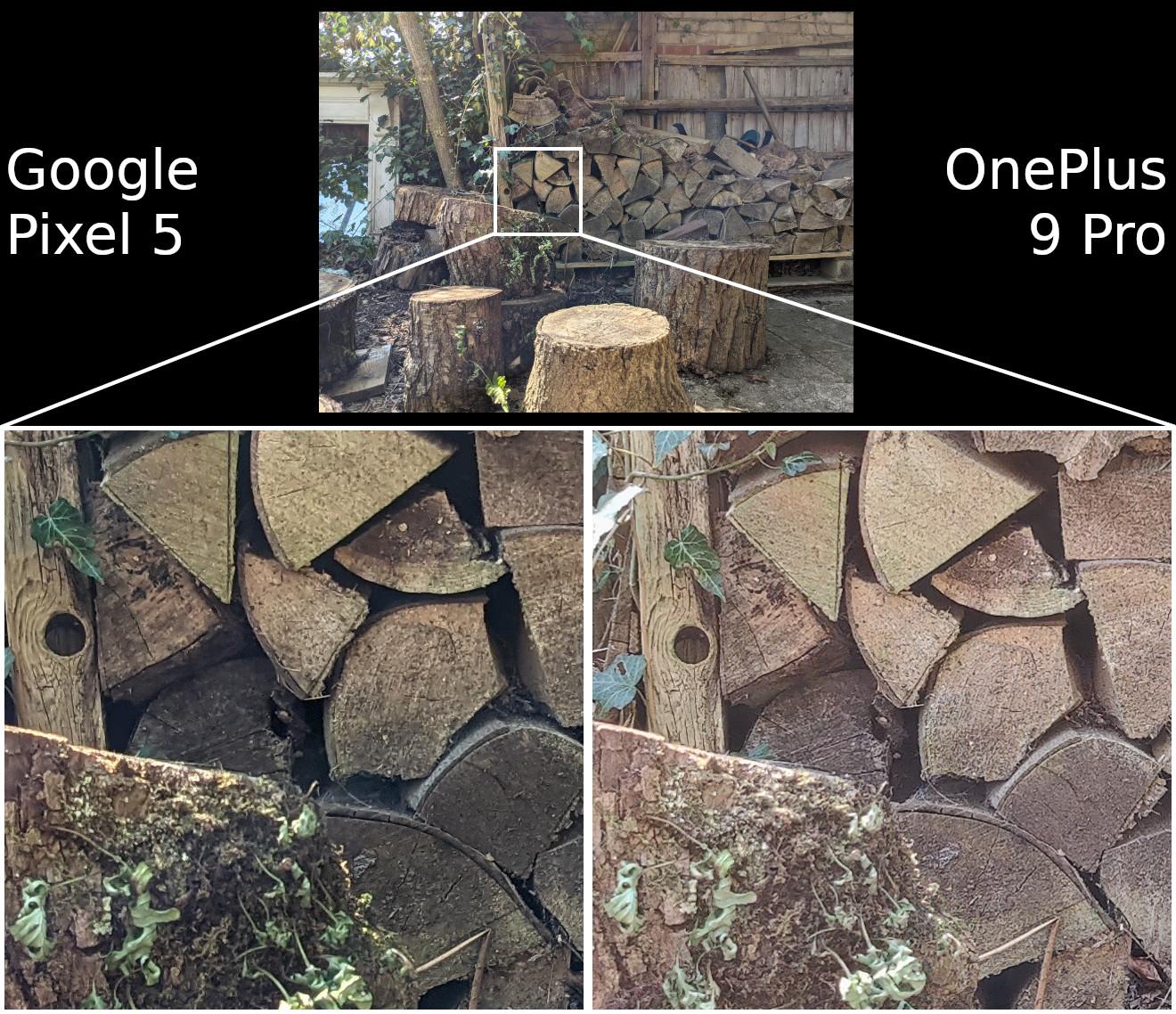 Google Pixel 5 vs OnePlus 9 Pro detail