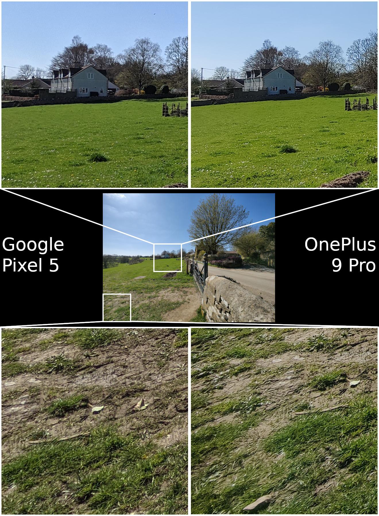 Google Pixel 5 vs OnePlus 9 Pro wide