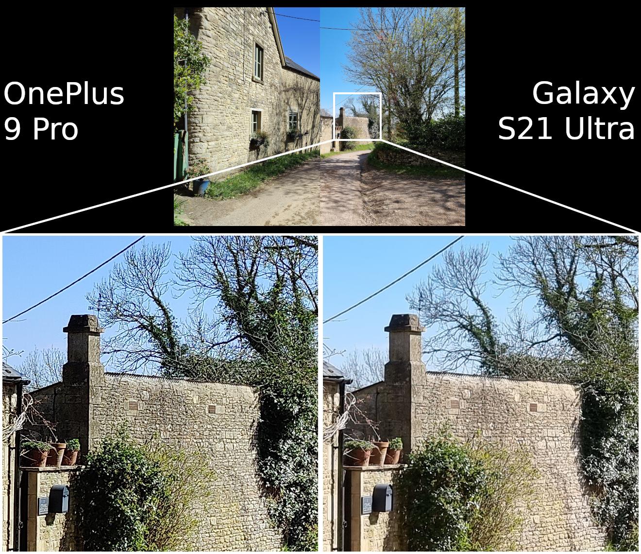 OnePlus 9 Pro vs Samsung Galaxy S21 Ultra camera detail