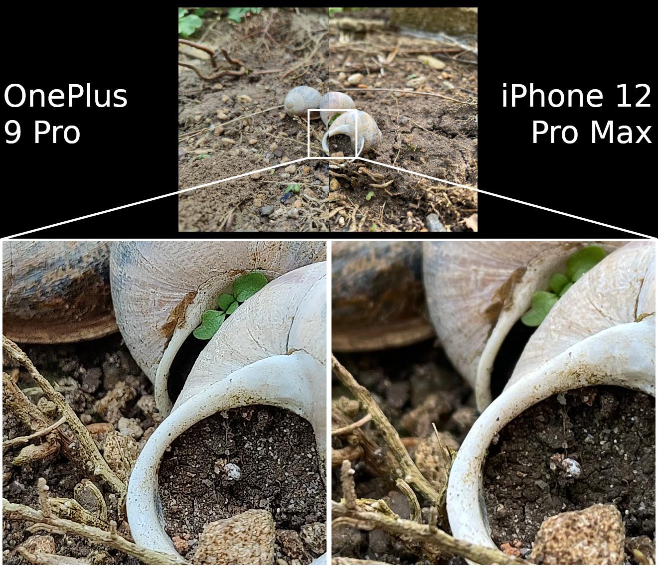 OnePlus 9 Pro vs iPhone 12 Pro Max detail