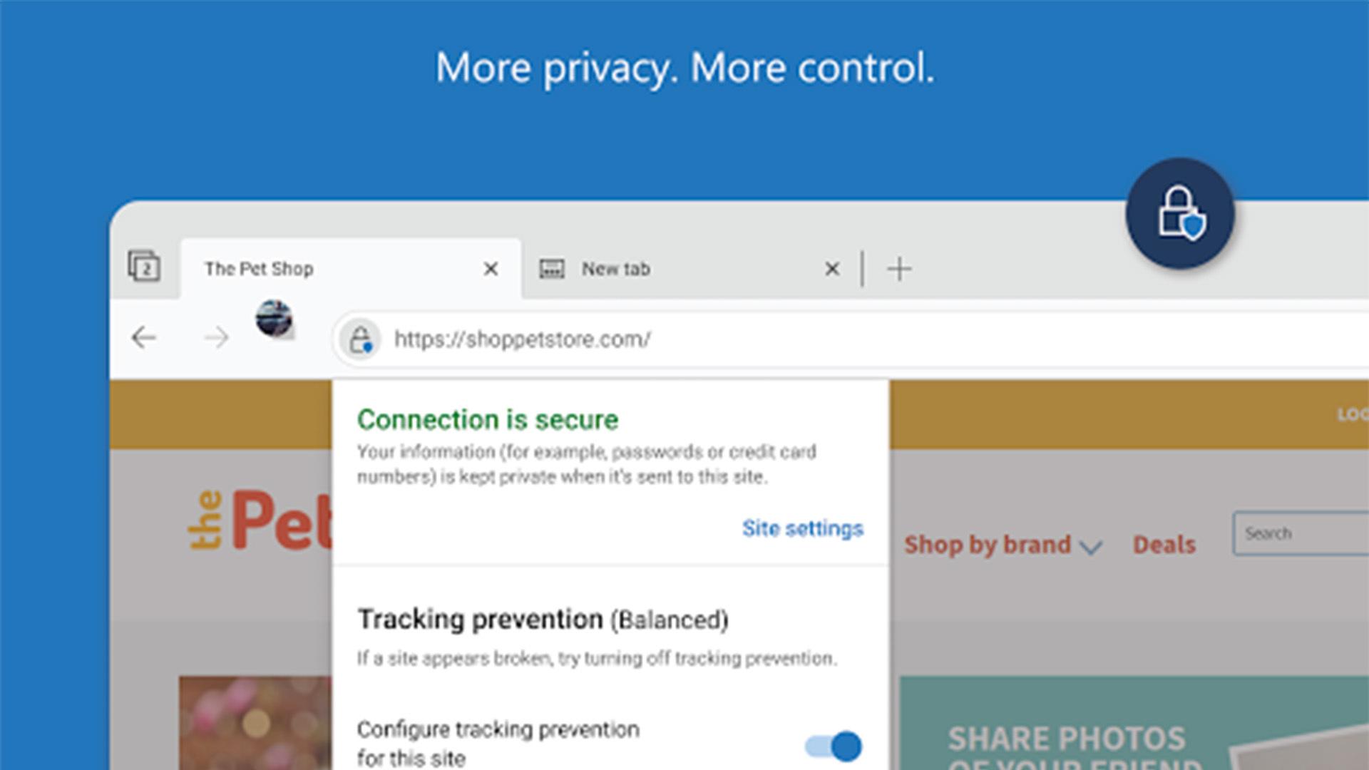Microsoft Edge Canary screenshot 2021