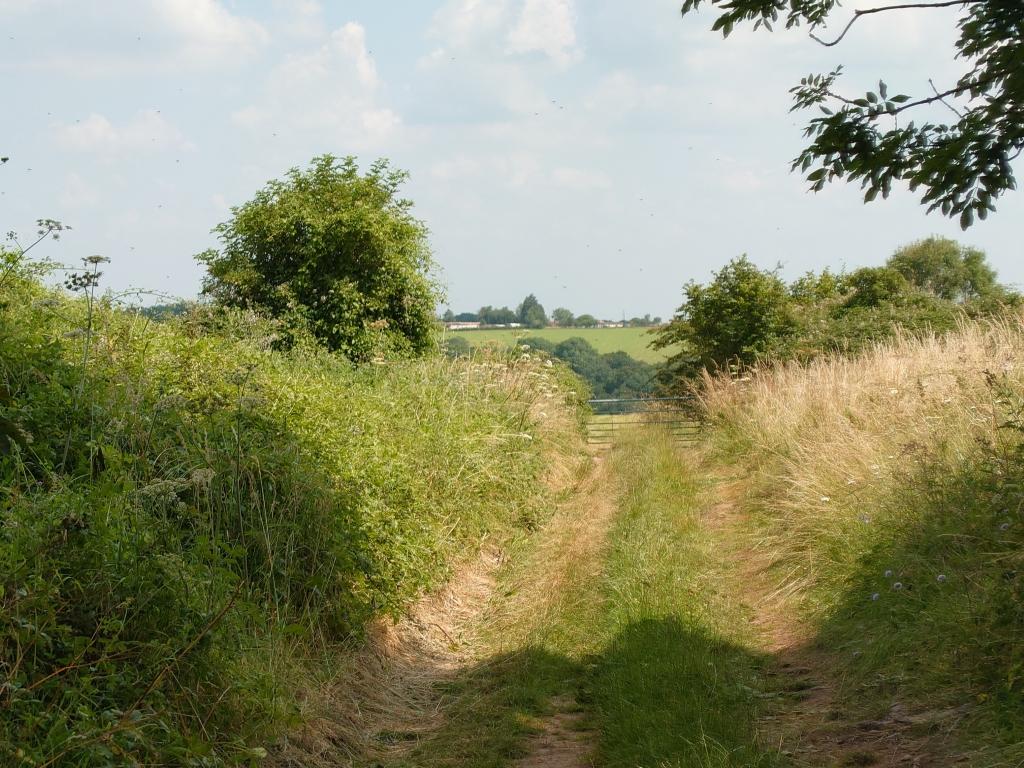 3x zoom of distant farm taken by Sony Xperia 1 III