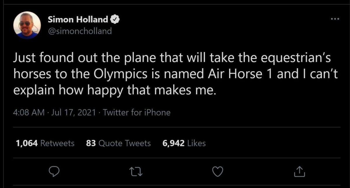 air horse 1