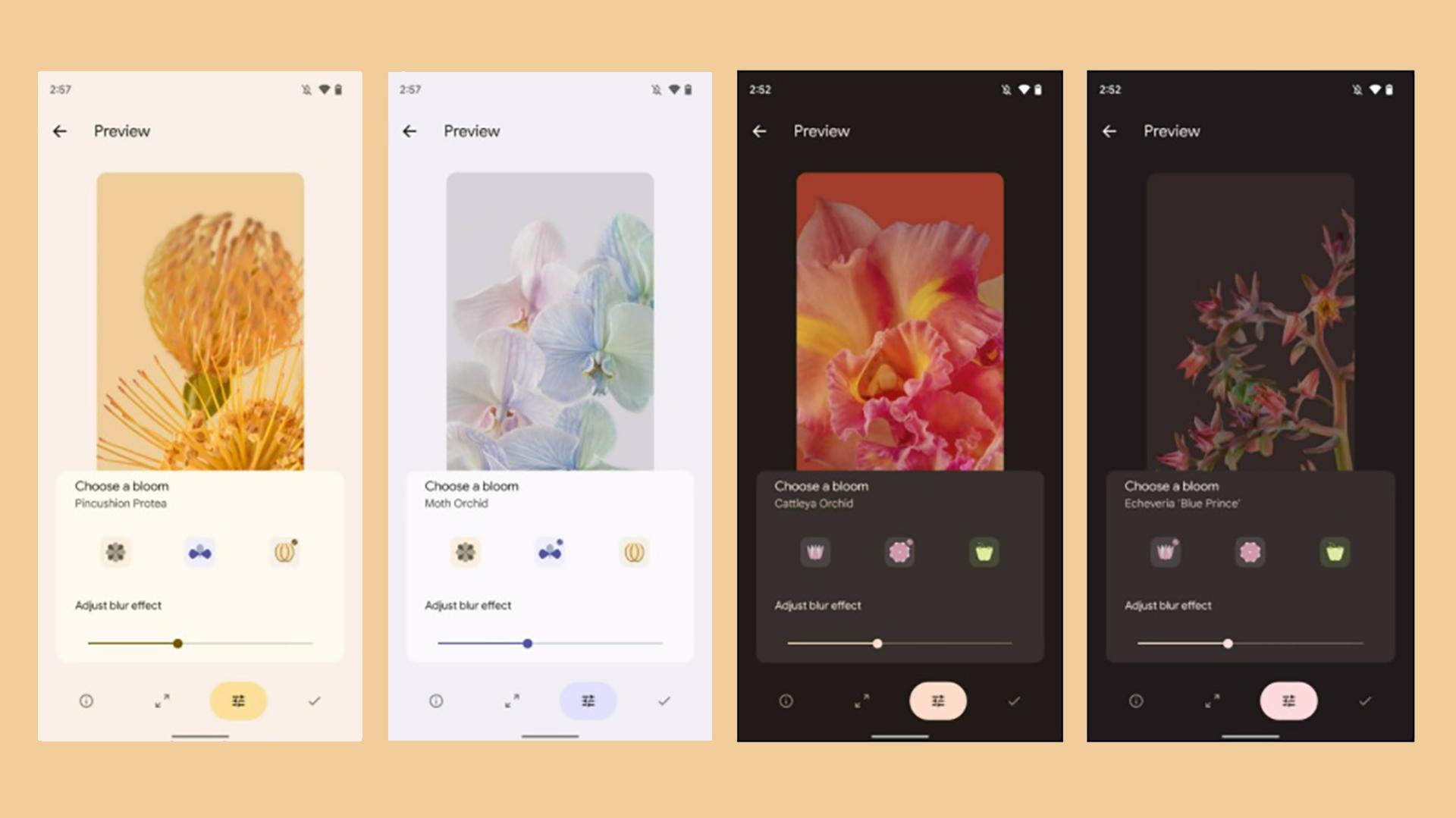 Google Pixel 6 Wallpapers Bloom Leaked