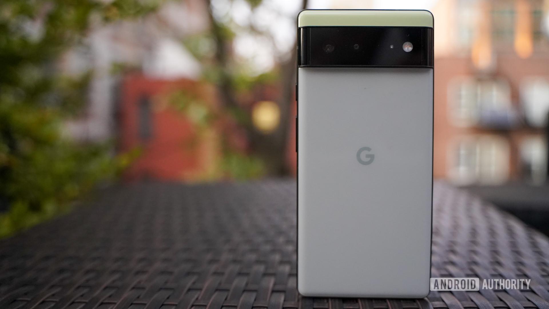 Google Pixel 6 rear panel