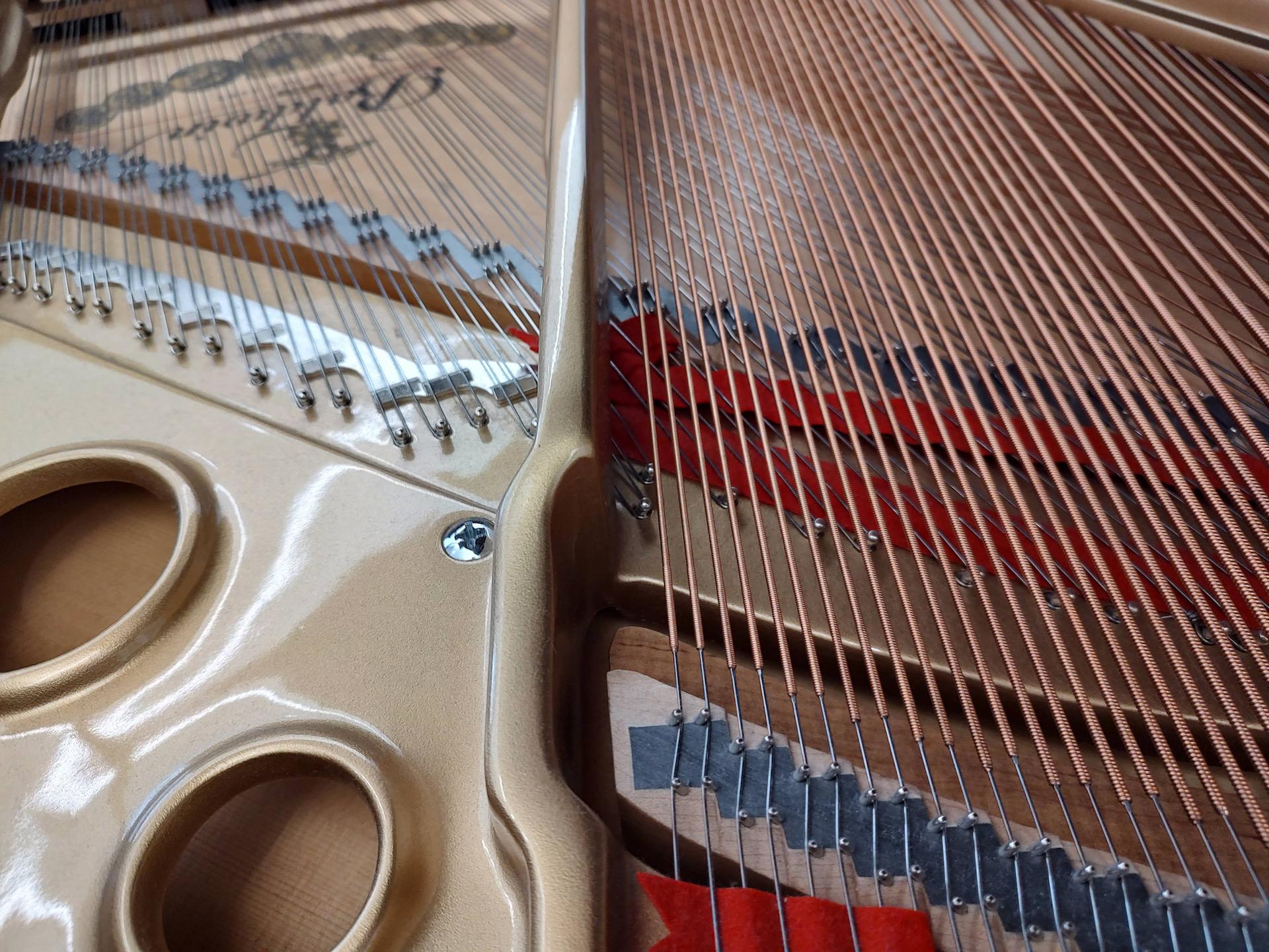 Motorola Edge 2021 photo sample piano wire