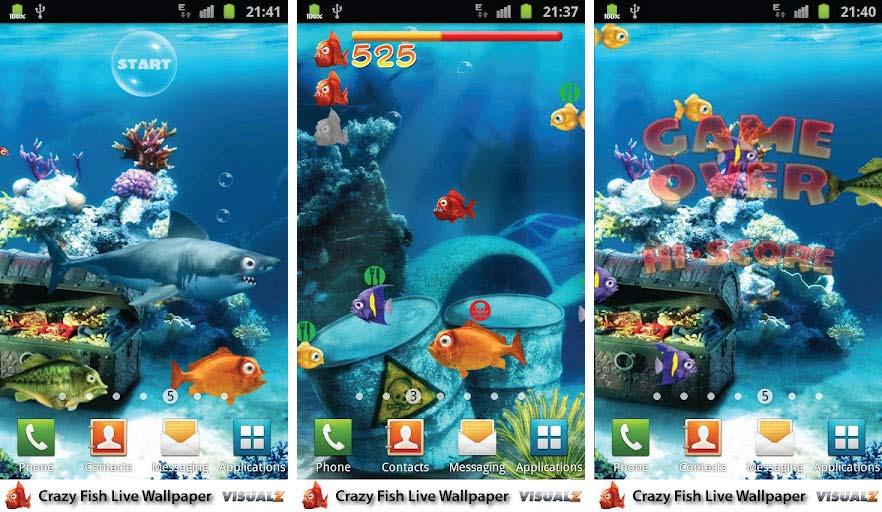 Crazy Fish Live Wallpaper Free