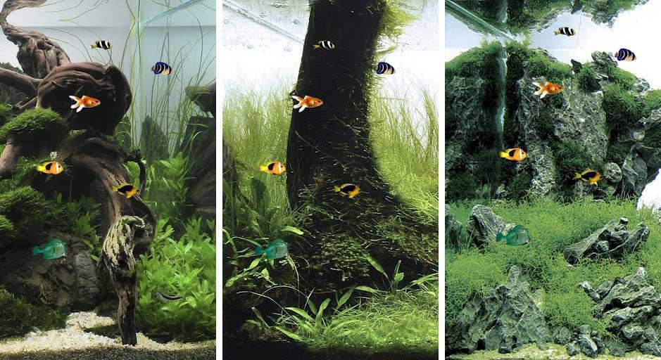 Best Aquarium Fish Live Wallpapers Android Fish Tank 3d Live Wallpaper ...